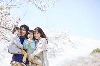 桜と日本人家族