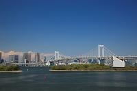 東京都 お台場からレインボーブリッジと東京タワー
