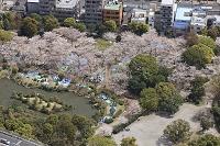 140405-東京都 墨田区-隅田公園