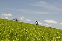丘を自転車で上る外国人カップル