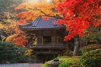兵庫県 岩滝寺