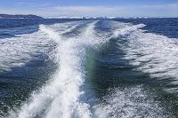 グリーンランド 航跡