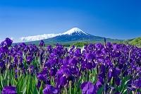山梨県 河口湖と富士山