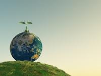 緑の丘にある地球儀から新芽