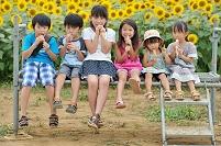 ひまわり畑の日本人の子供達