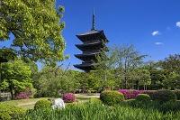 東寺の五重塔 京都府