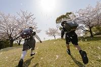 桜の咲く公園で入学を迎え走る子供