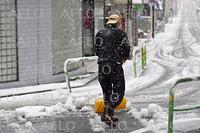 関東甲信の広い範囲で雪