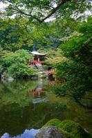 醍醐寺 弁天池夏景