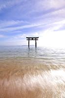 滋賀県 白鬚神社 湖中大鳥居と琵琶湖