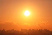都会の高層ビル群と夕日