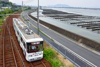広島県 広島電鉄 カキいかだの海辺を走る3800形連接路面電車