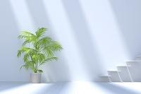 白い壁と階段と観葉植物 CG
