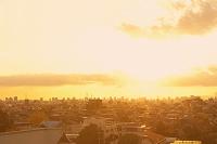 夕陽に照らされる街