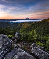 山梨県 早朝の雲海に浮かぶ富士山