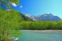 長野県 新緑の梓川と穂高連峰