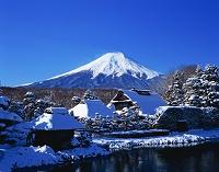 山梨県 忍野八海 榛の木林資料館 富士山