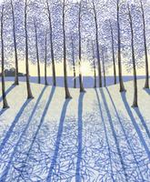 光さす冬の森林 イラスト