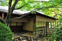 和歌山県 和歌山城の紅松庵