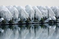 北海道 テトラポットのしぶき氷柱