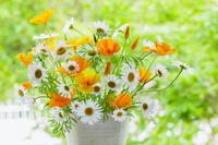 花瓶のエスコルチアとマーガレットの花