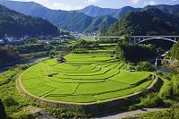 和歌山県 あらぎ島