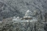 岐阜県 雪景色の郡上八幡城