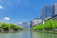 東京都 新緑の丸の内