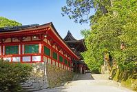 奈良県 天理市 石上神宮