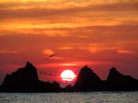 神奈川県 真鶴半島・三ツ石海岸