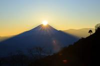 山梨県 足馴林道から望む正月元旦のダイアモンド富士