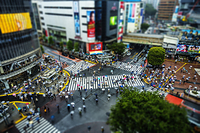 雨の渋谷交差点