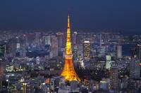東京都 東京タワーと都市の風景