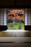 京都府 光明院 茶室越しに見る波心庭と紅葉