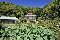 神奈川県 光明寺