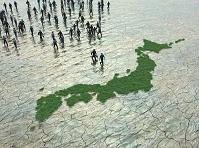 草で出来た日本地図に走り寄る