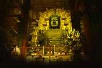 奈良県 奈良市 東大寺 大仏殿 盧舎那仏 夜景