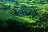 群馬県 渋峠から朝日が差し込む芳ヶ平湿地群