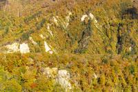 栗駒山北東麓 紅葉