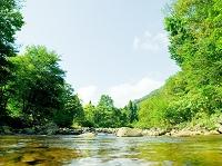 秋田県 法体の滝周辺 渓谷を川から見る