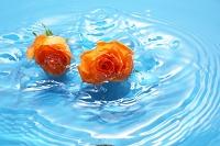 水面に浮いたバラと波紋