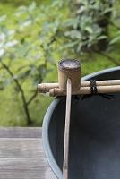 日本庭園と竹杓子