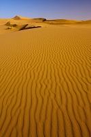 モロッコ メルズーガ 砂漠