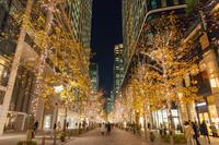東京都 イルミネーションの丸の内 夜景