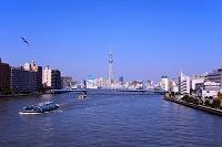 東京都 清洲橋とスカイツリー