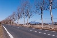 茨城県 つくば市 学園東大通りと筑波山