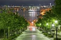 北海道 八幡坂と函館港夜景
