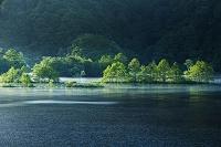 福島県 裏磐梯 秋元湖