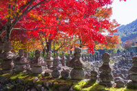 京都 嵯峨野 化野念仏寺