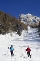 フランス スキー